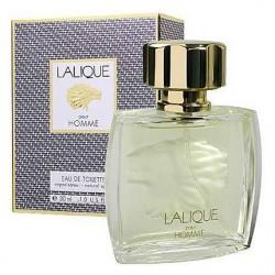 Lalique Pour Homme LEW